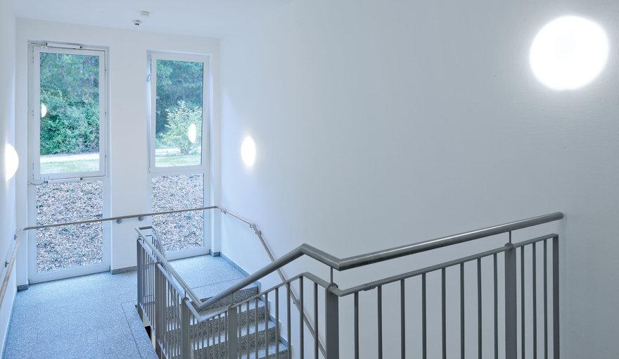 fliegende ameisen auf dem balkon ameisen auf dem balkon. Black Bedroom Furniture Sets. Home Design Ideas