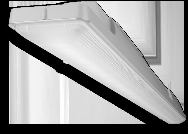 Araxeon Produktbild